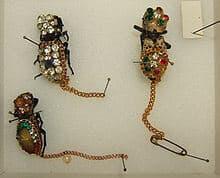 roach jewelry